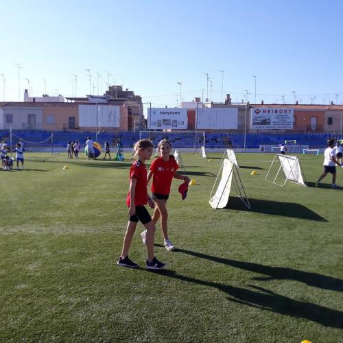 esport7